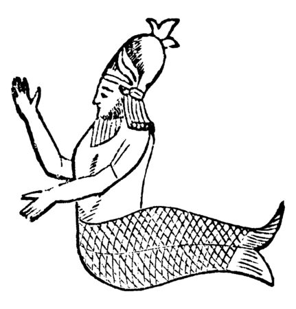 An image of a man with a half body like a man and half body like fish known as Mermaid, vintage line drawing or engraving illustration. Иллюстрация