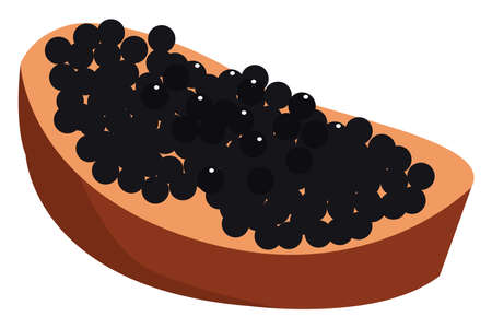 Black caviar, illustration, vector on white background.