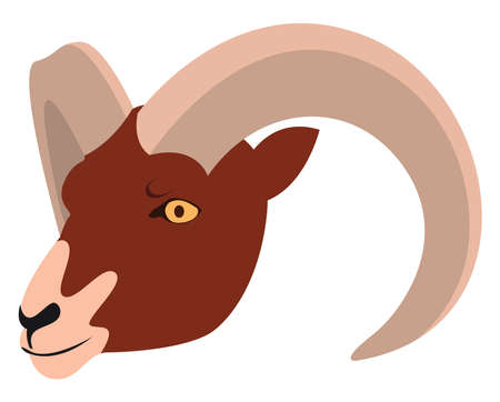 Aries, illustration, vector on white background.