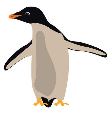 Penguin, illustration, vector on white background.