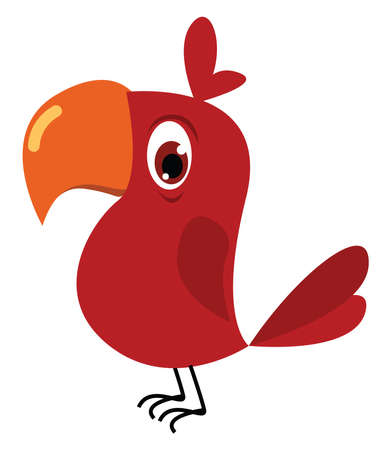 Red parrot, illustration, vector on white background.