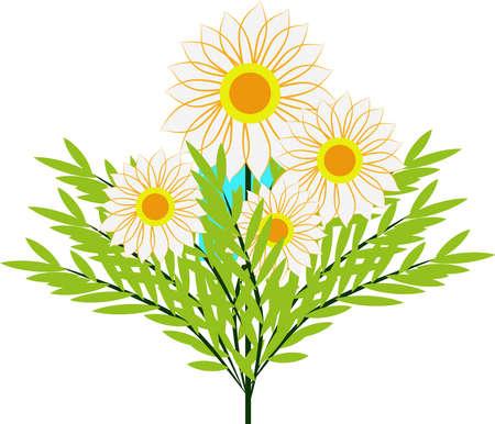 White flowers, illustration, vector on white background. Illustration