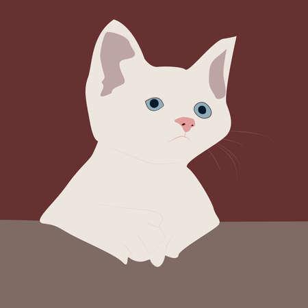 White cat, illustration, vector on white background. 向量圖像