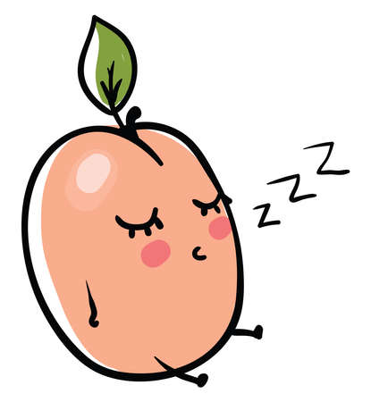 Sleeping apricot, illustration, vector on white background.