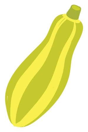 Flat zucchini, illustration, vector on white background.
