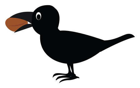 Crow with a nut, illustration, vector on white background.