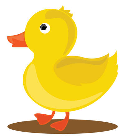 Yellow little duck, illustration, vector on white background.