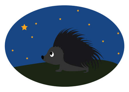Hedgehog in night, illustration, vector on white background. Banque d'images - 152553303