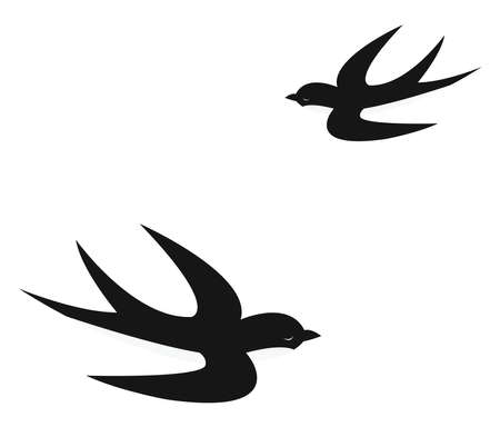 Swallows flying, illustration, vector on white background.