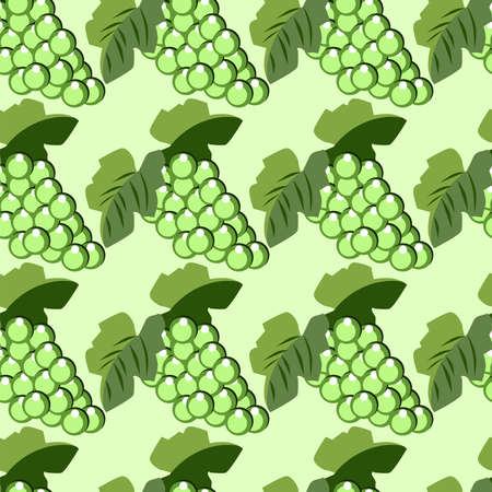 Green grapes, illustration, vector on white background.