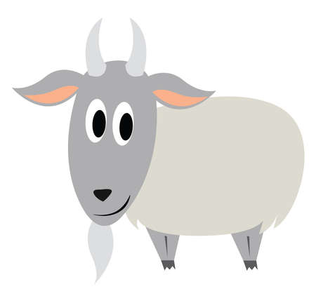 Old goat, illustration, vector on white background.