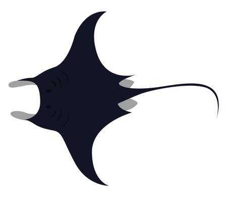 Manta ray, illustration, vector on white background.