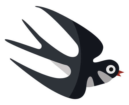 Flying swallow, illustration, vector on white background.