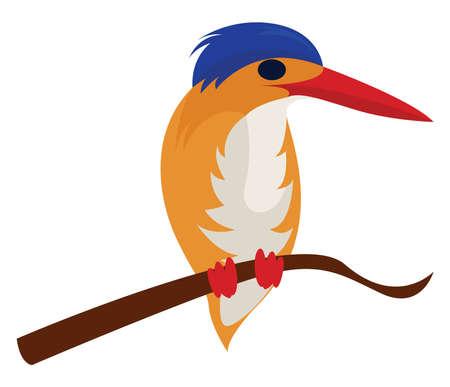 African big bird, illustration, vector on white background