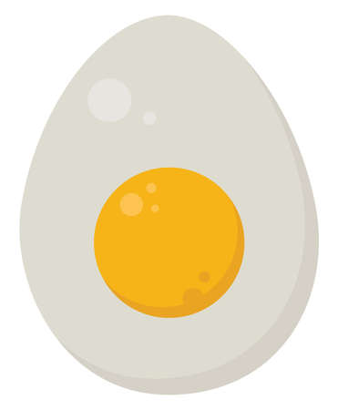 Half egg, illustration, vector on white background