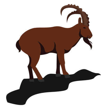Mountain goat, illustration, vector on white background