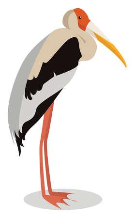Painted stork, illustration, vector on white background 向量圖像