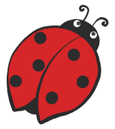 Round ladybug , illustration, vector on white background 向量圖像