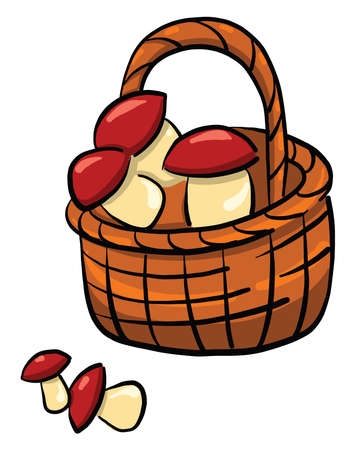 Mushrooms in basket , illustration, vector on white background
