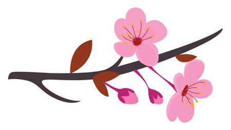 Sakura tree , illustration, vector on white background
