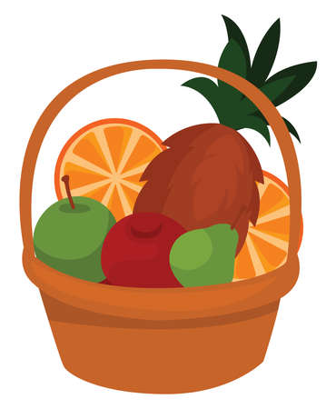 Basket with fruits, illustration, vector on white background