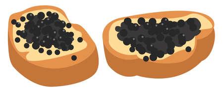 Beluga caviar, illustration, vector on white background