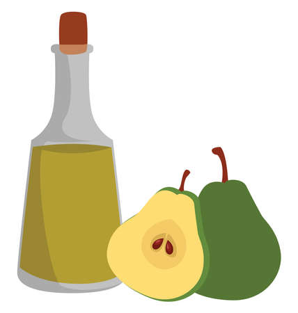 Fruit liqueur, illustration, vector on white background