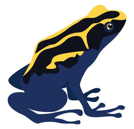 Poison frog, illustration, vector on white background