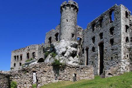 ogrodzieniec: Castle Ogrodzieniec