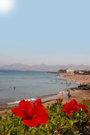 lanzarote: a view of a lanzarote beach strip