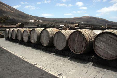 lanzarote: barrels in the wine region of lanzarote Stock Photo