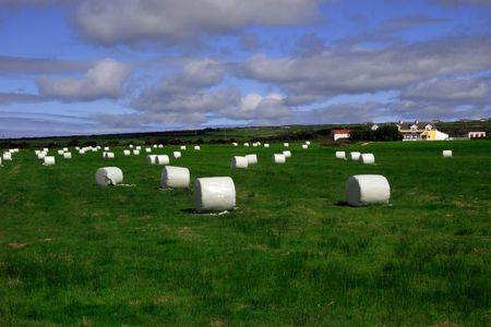 a field of bales in the west of ireland Stock Photo - 2457197