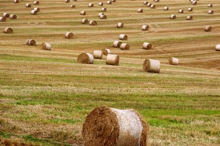 as far as the eye can see: a scenic view in the irish countryside Stock Photo