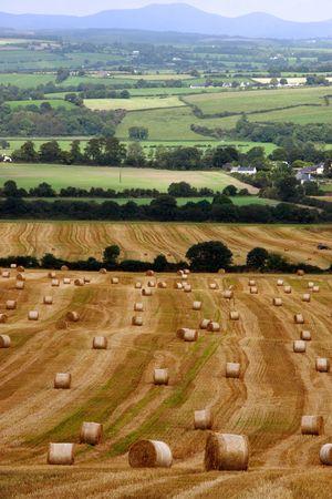 a scenic view in the irish countryside Banco de Imagens