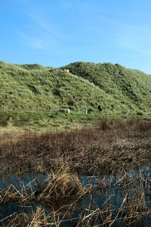 weird sand dunes on the west coast of ireland Stock Photo - 3066231