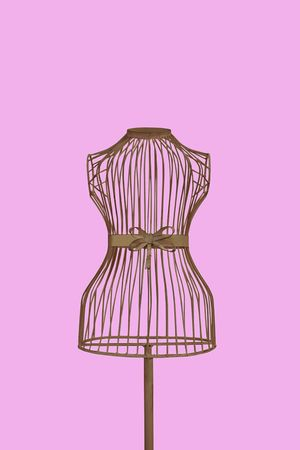 a mannequin thats see through with a clipping path on a pink background Stock Photo - 3303242