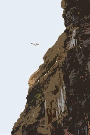 seagull at ballybunion cliffs on the west coast of ireland Stock Photo - 4286140