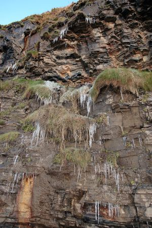 ballybunion: icicles on a cliff face in ballybunion ireland on a winters morning Stock Photo