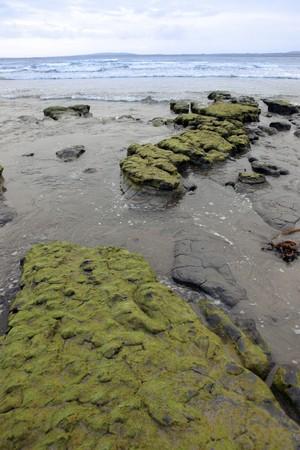 mud banks on the west coast of ireland near ballybunion photo