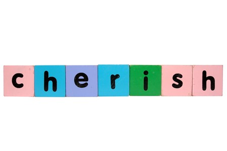 assorted childrens toy letter building blocks against a white background that spell cherish photo