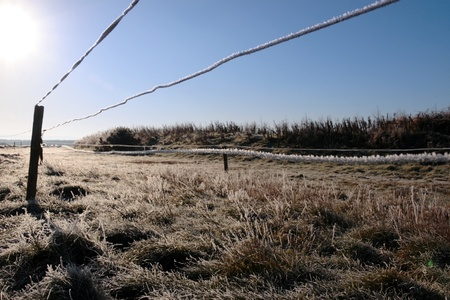 ice coated wire fence in a farm field on a winters day in ireland photo