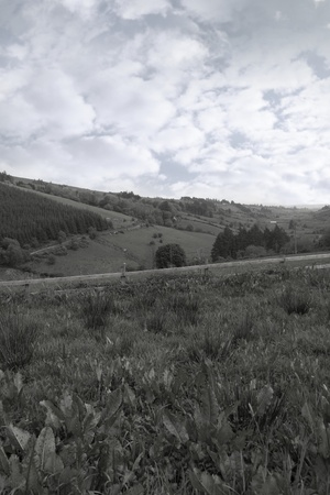 lush irish countryside landscape in glenough county tipperary ireland in black and white photo