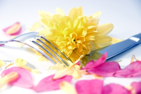 silver fork and knife isolated with dahlia and rose petals for concept on romantic dining photo