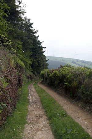 dirt road to a windmill on lush irish countryside landscape in glenough county tipperary ireland photo