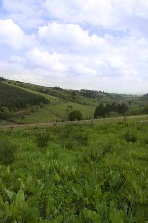 lush irish countryside landscape in glenough county tipperary ireland Stock Photo - 12893752
