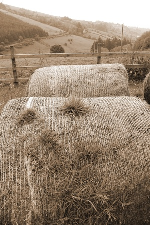 county tipperary: old round bales in lush irish countryside landscape at glenough county tipperary ireland in sepia Stock Photo