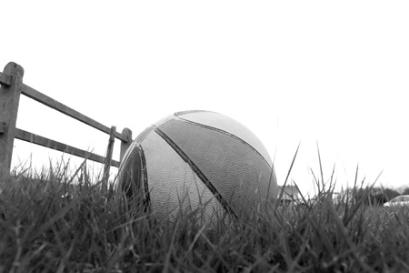 basketball in the long grass of a playing field Stock Photo - 16428139