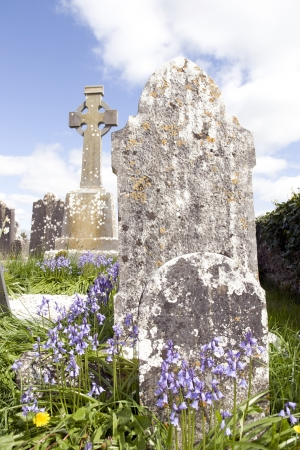 old ancient Celtic graveyard with unmarked gravestones and bluebell flowers in Ireland photo