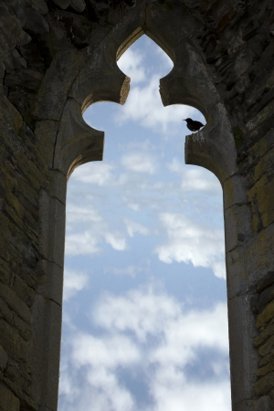 old arch window with no glass and a bird perched in an Irish historic site Stock Photo - 18220930