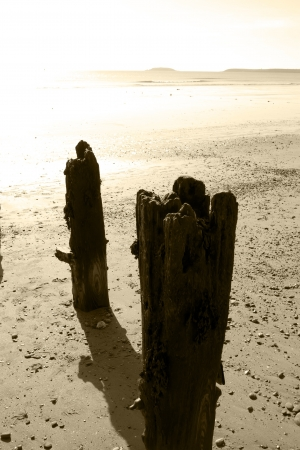 youghal: sunshine over the beach breakers  in Youghal county Cork Ireland in sepia
